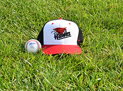 Change in date, location for Northeast baseball games