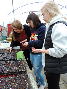 High school students learn from Northeast's horticulture and golf course management program